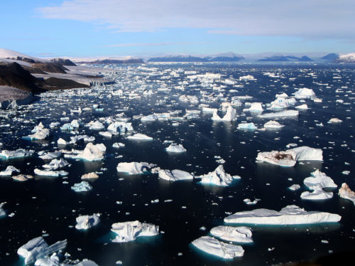 https://en.wikipedia.org/wiki/Wikipedia:Featured_picture_candidates/Glaciers_and_Icebergs_in_high_Arctic